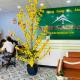 Top 10 công ty Bất động sản Nhơn Trạch hàng đầu 2021