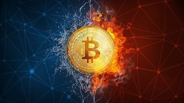 Bitcoin 8/12, giá bitcoin hôm nay, giá bitcoin 8/12