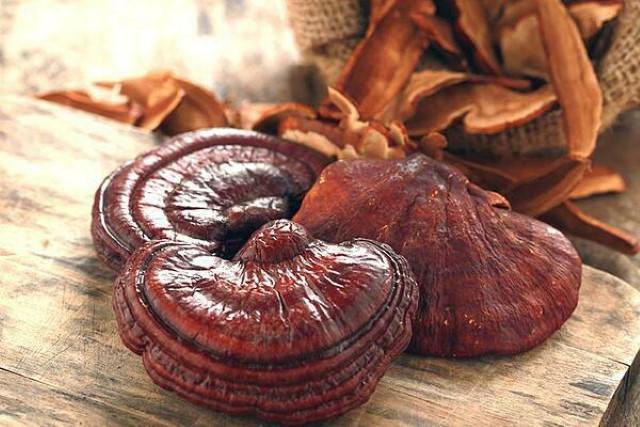 nấm linh chi, công dụng của nấm linh chi, tác dụng của nấm linh chi