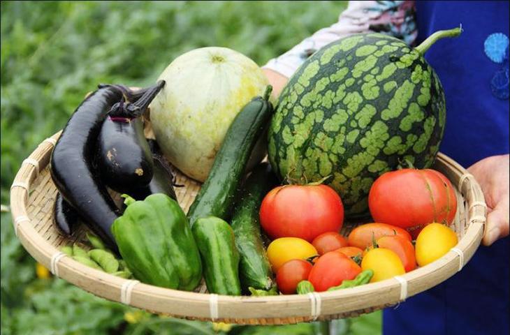 Thực phẩm hữu cơ, thực phẩm hữu cơ là gì