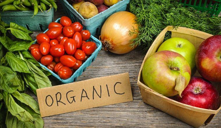 Thực phẩm hữu cơ là gì? Lợi ích khi sử dụng thực phẩm hữu cơ