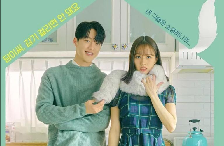 phim Bạn cùng phòng của tôi là Gumiho, Bạn cùng phòng của tôi là Gumiho, phim Hàn Quốc, phim tình cảm Hàn Quốc