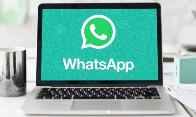 Whatsapp là gì? 5 bước tải WhatsApp Messenger trên máy tính đơn giản