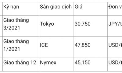 Giá xăng dầu hôm nay 27/11: Giá xăng tăng thêm 600 đồng/lít