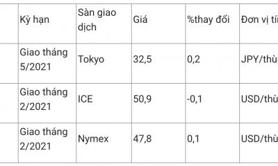 Giá xăng dầu hôm nay 29/12: Lực đẩy mới giúp giá dầu lấy lại đà tăng
