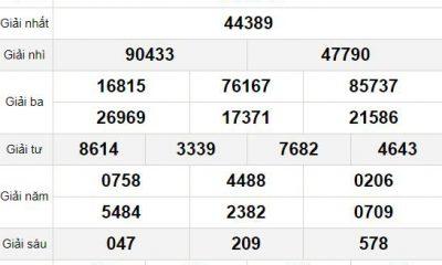 XSMB thứ 7 20/2 - Kết quả Xổ số Miền Bắc hôm nay 20/2: Xổ số Nam Định
