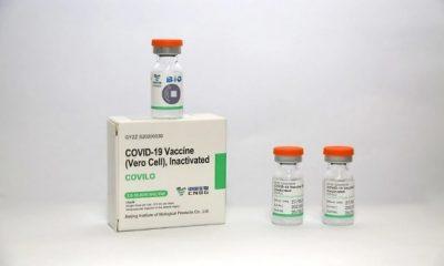 Vắc-xin Vero Cell là gì? Thông tin cần biết về vắc-xin Vero Cell
